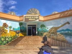 Gaziantep'te Alternatif Bir Gün: Gaziantep Hayvanat Bahçesi