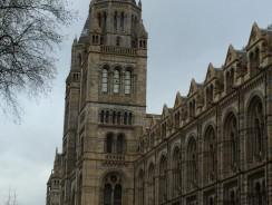 Londra'da Neler Yapılabilir? : Müzeler